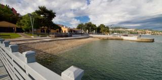 Morske živali in rastline v sožitju z obiskovalci Mestne plaže Koper