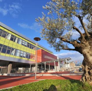 Deseta obletnica Osnovne šole Koper